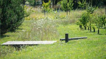 Espace vert harmonie des formes Simple, beau, une invitation au parcours. Un instant de rêverie au milieu de la ville. Ville de Bègles  Bordeaux  Bègles-France